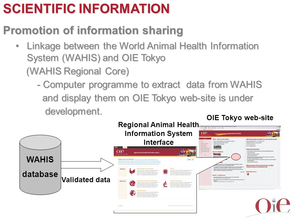 Regional Animal Health Information System