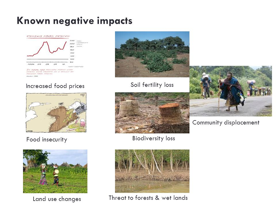 Known negative impacts