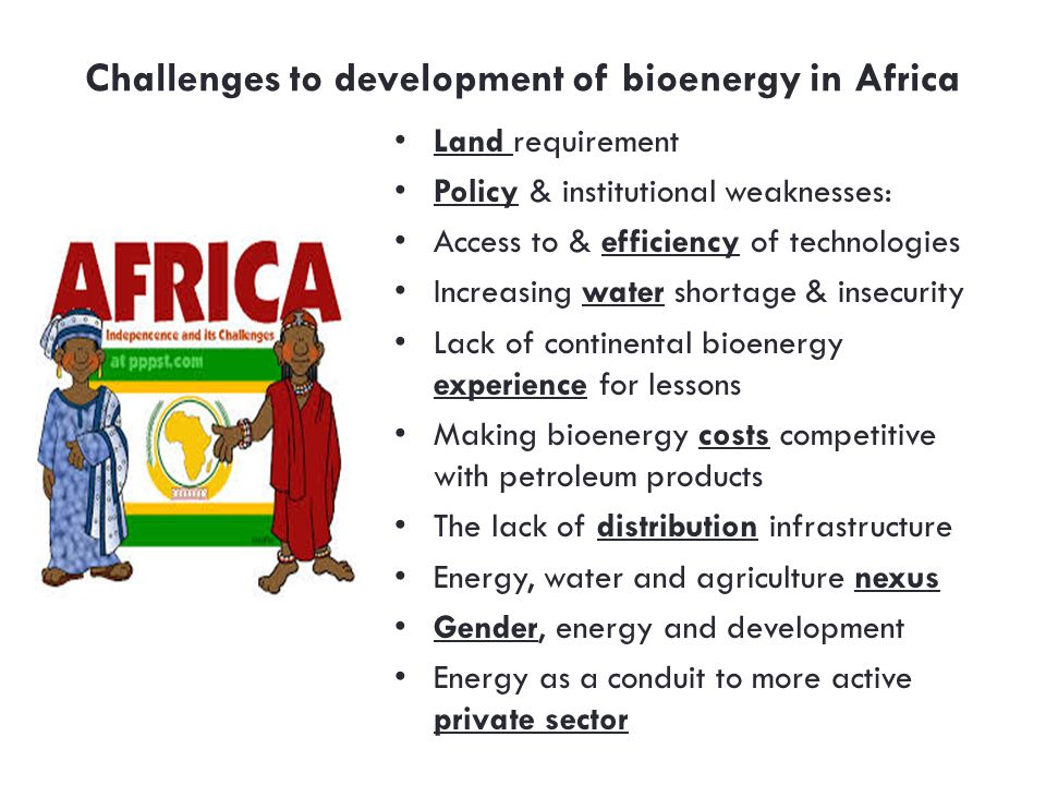 Challenges to development of bioenergy in Africa