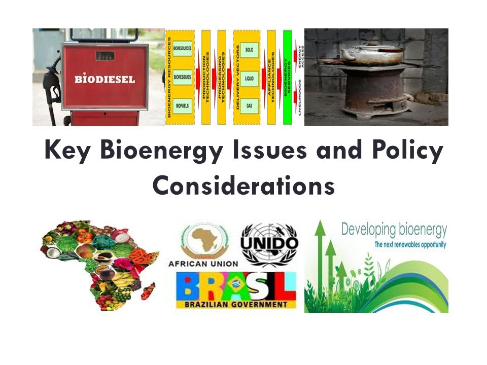 Key Bioenergy Issues and Policy Considerations