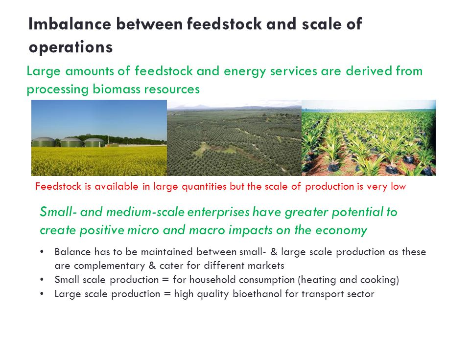 Imbalance between feedstock and scale of operations