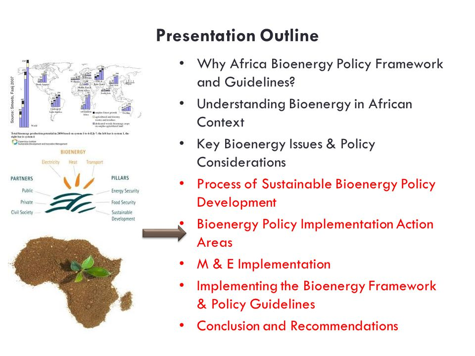 Presentation Outline Why Africa Bioenergy Policy Framework and Guidelines Understanding Bioenergy in African Context.