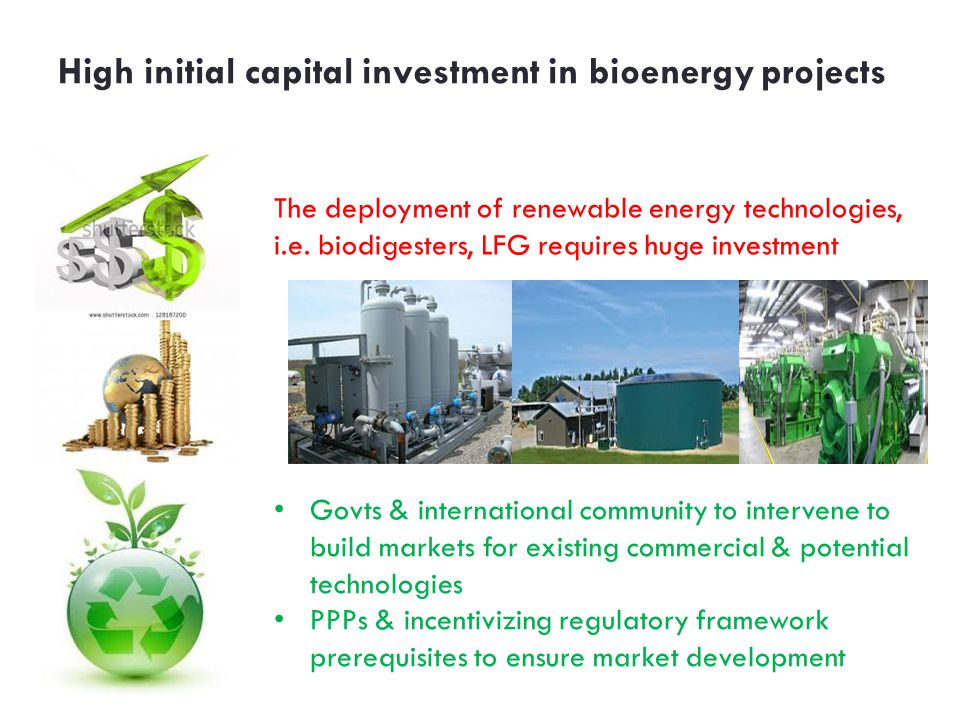 High initial capital investment in bioenergy projects