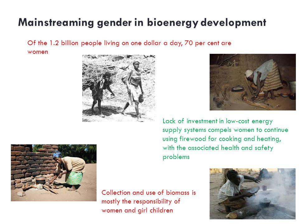 Mainstreaming gender in bioenergy development