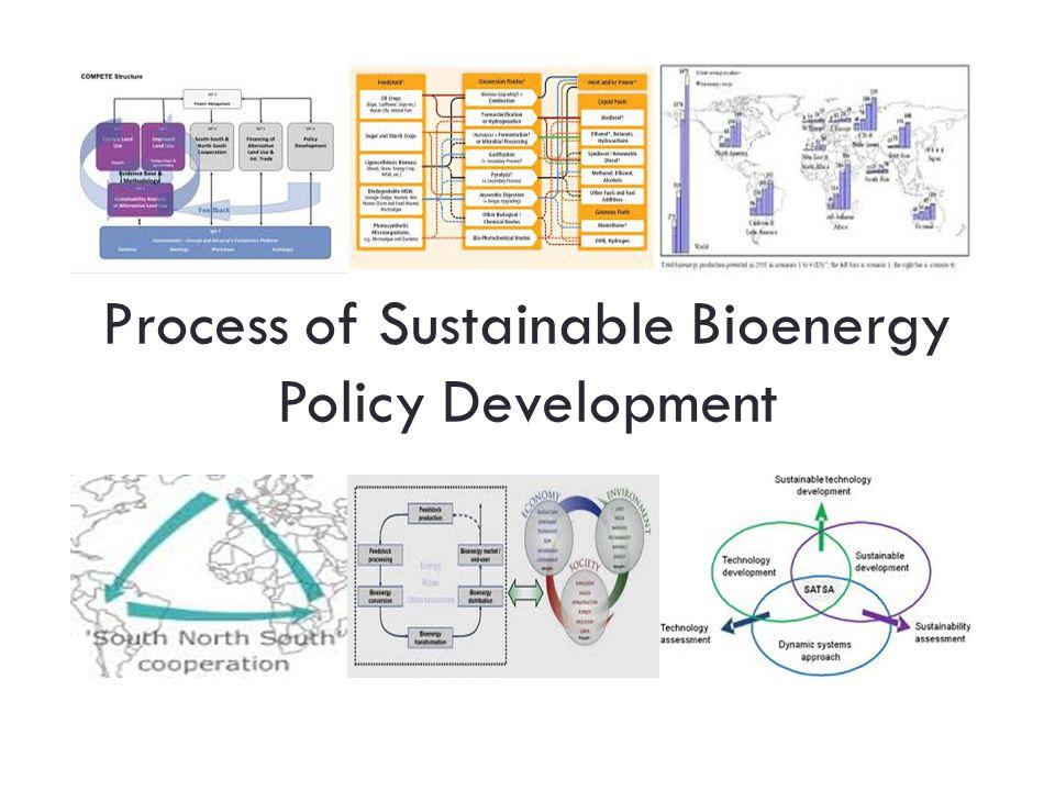 Process of Sustainable Bioenergy Policy Development