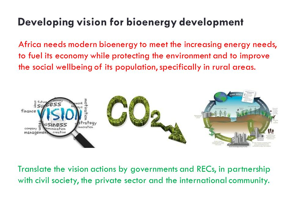 Developing vision for bioenergy development