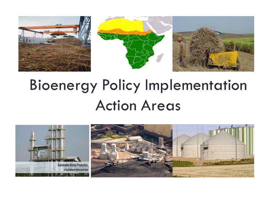 Bioenergy Policy Implementation Action Areas