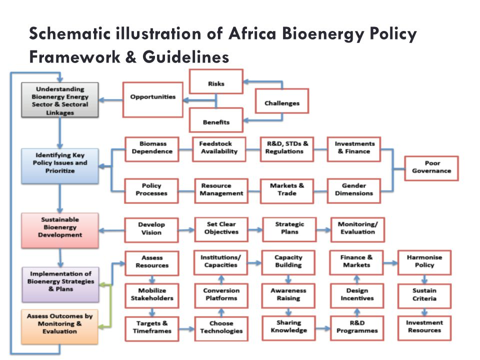 Schematic illustration of Africa Bioenergy Policy Framework & Guidelines