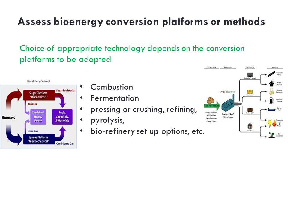 Assess bioenergy conversion platforms or methods