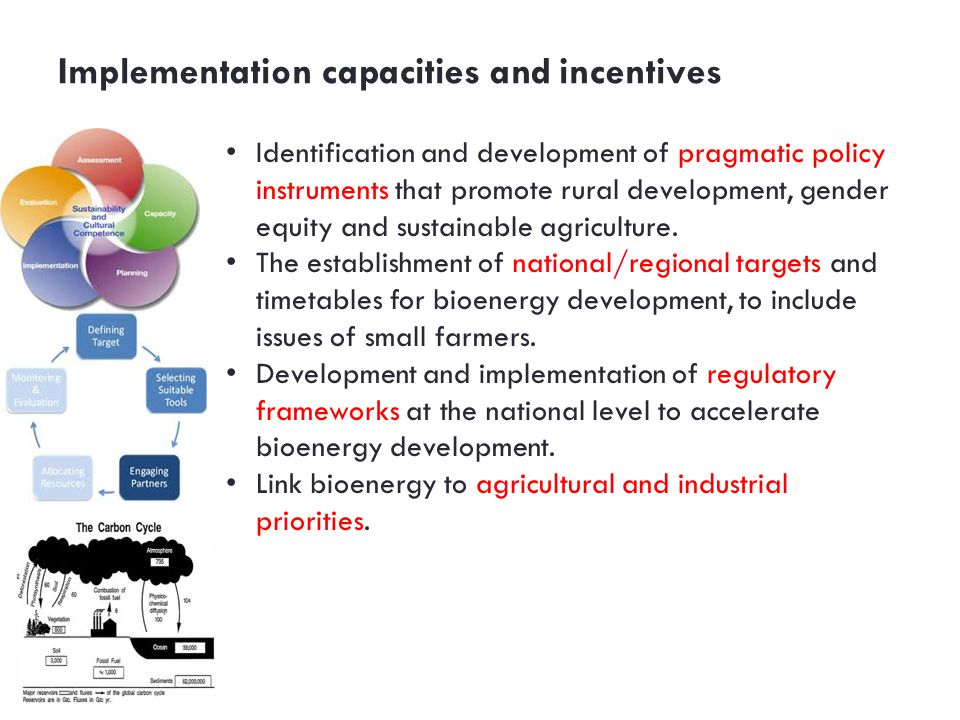 Implementation capacities and incentives