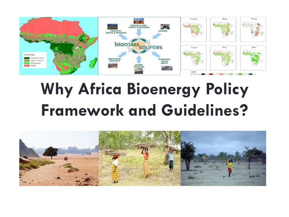 Why Africa Bioenergy Policy Framework and Guidelines
