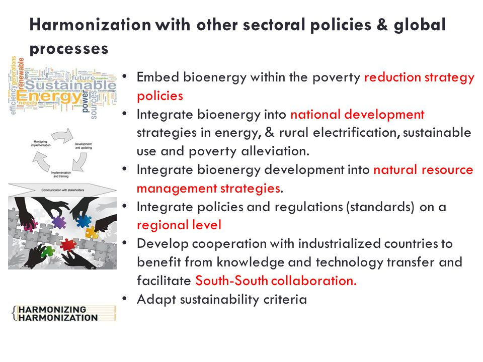 Harmonization with other sectoral policies & global processes