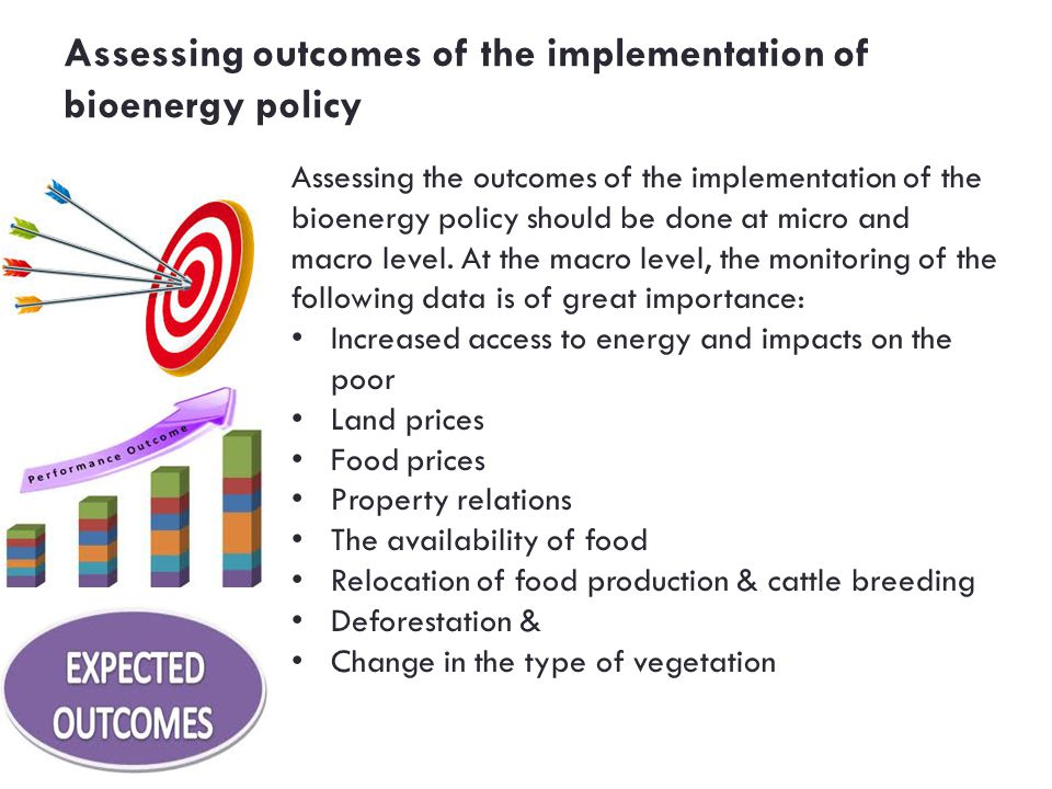 Assessing outcomes of the implementation of bioenergy policy