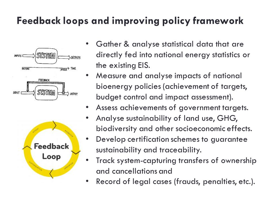 Feedback loops and improving policy framework