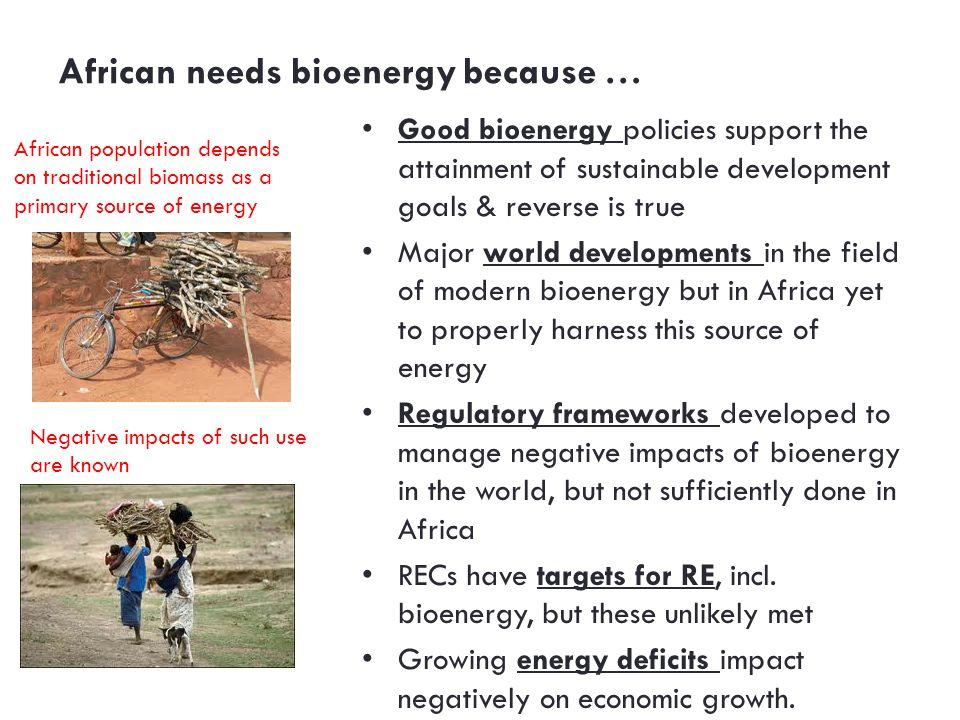 African needs bioenergy because …