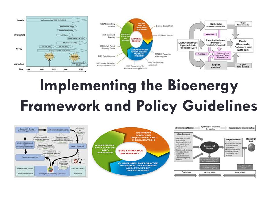 Implementing the Bioenergy Framework and Policy Guidelines