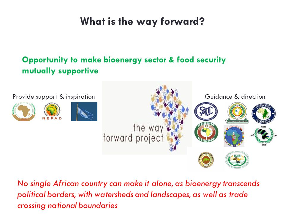 What is the way forward Opportunity to make bioenergy sector & food security mutually sup­portive.