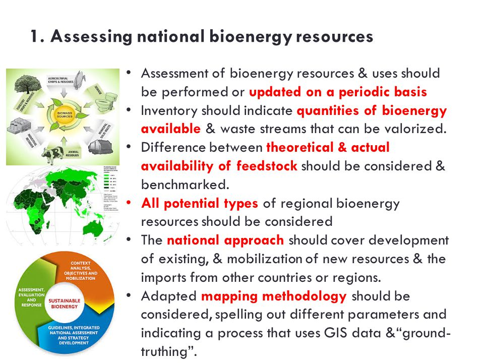 1. Assessing national bioenergy resources