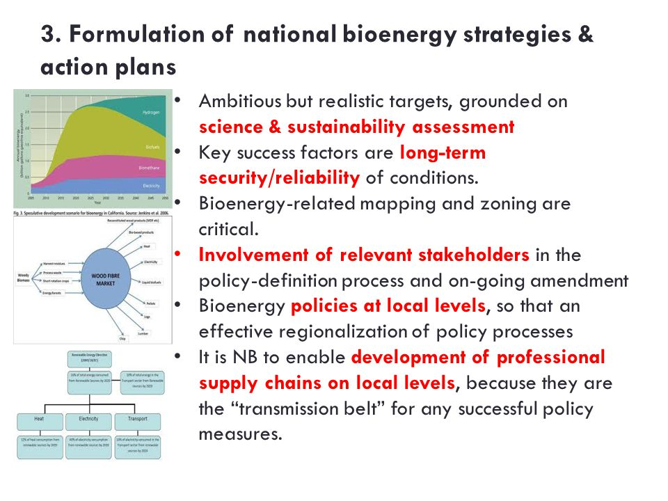 3. Formulation of national bioenergy strategies & action plans