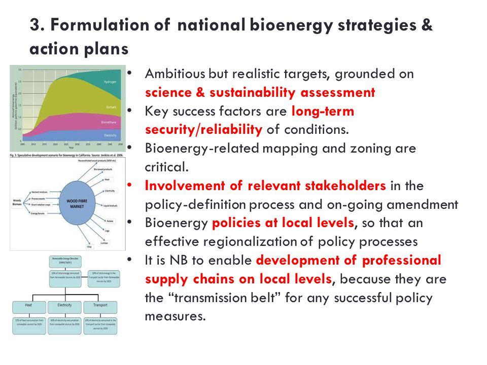 3. Formulation of national bioenergy strategies & action plans