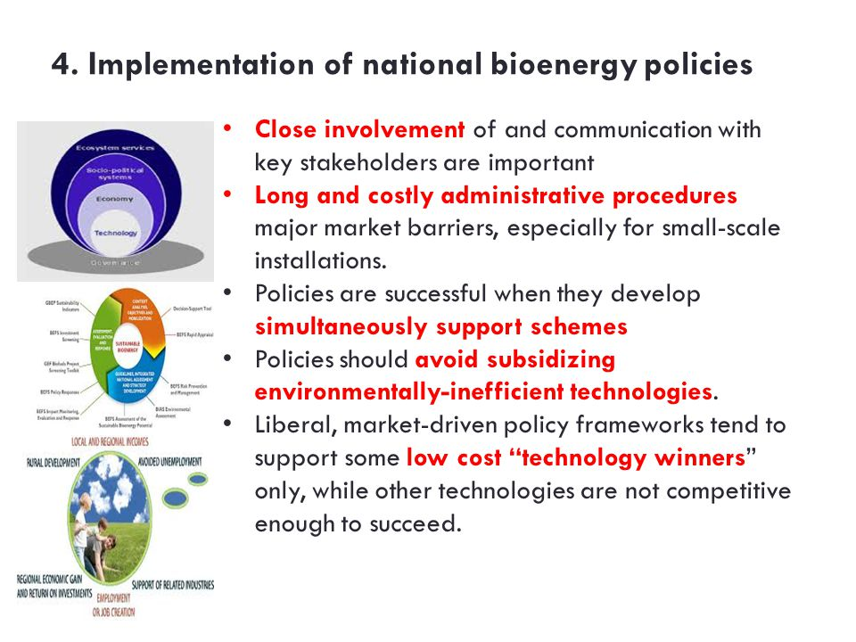 4. Implementation of national bioenergy policies