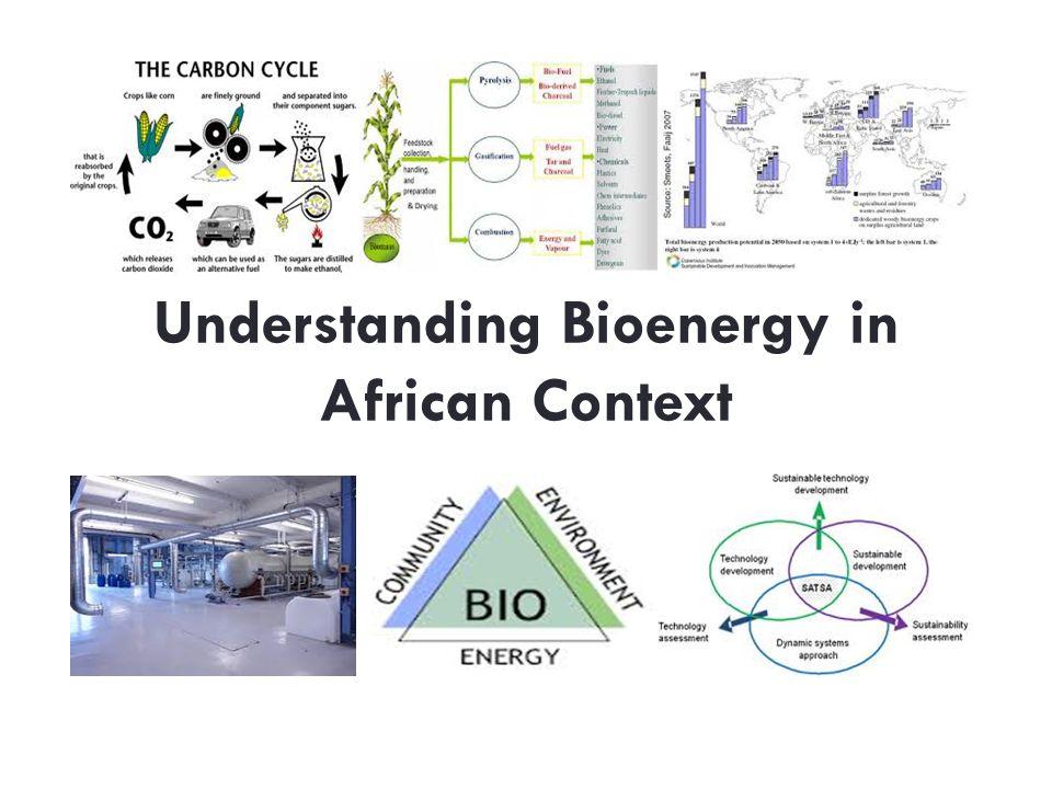 Understanding Bioenergy in African Context