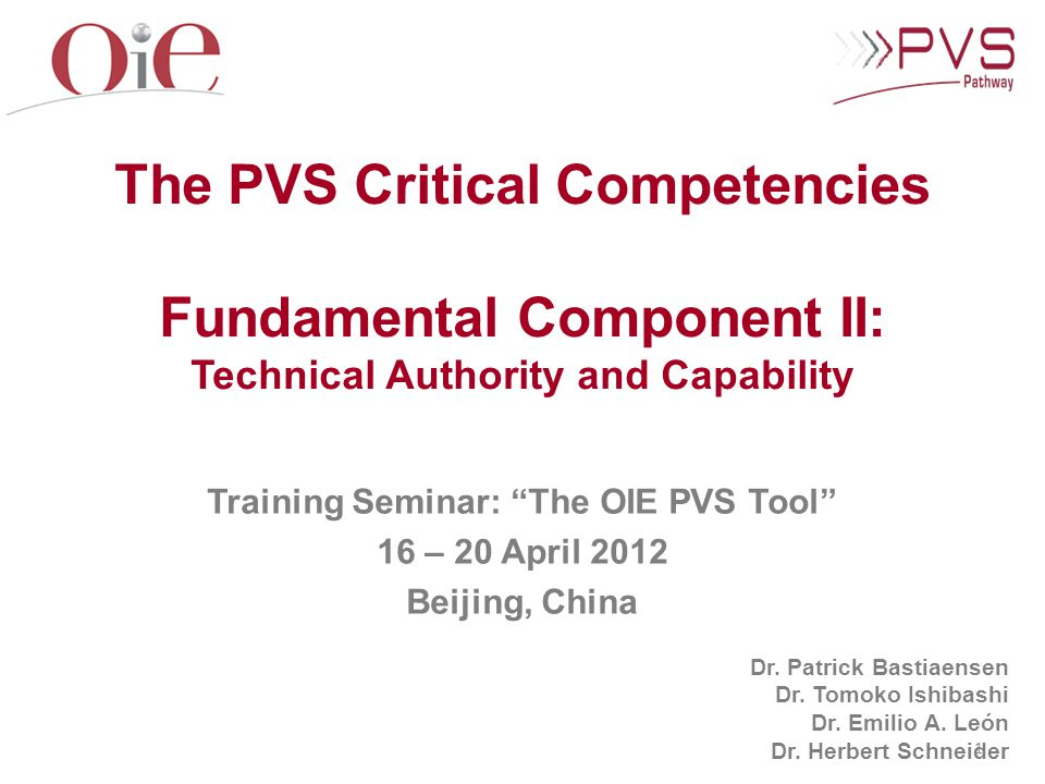 The PVS Critical Competencies Fundamental Component II: