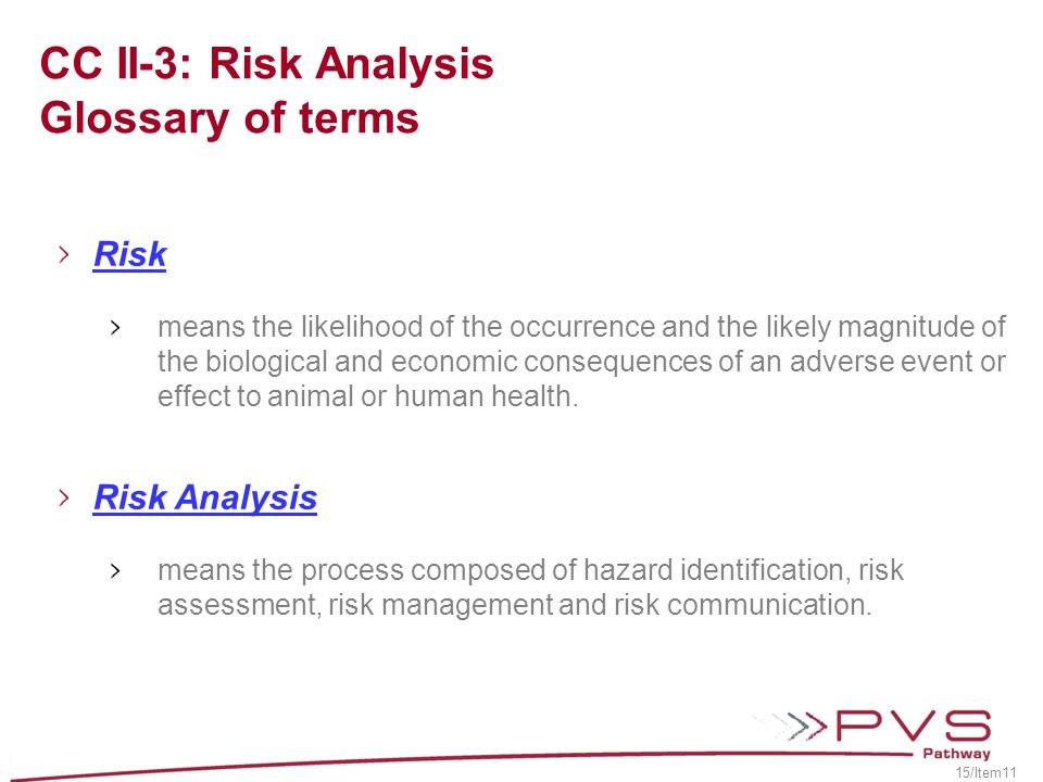 CC II-3: Risk Analysis Glossary of terms
