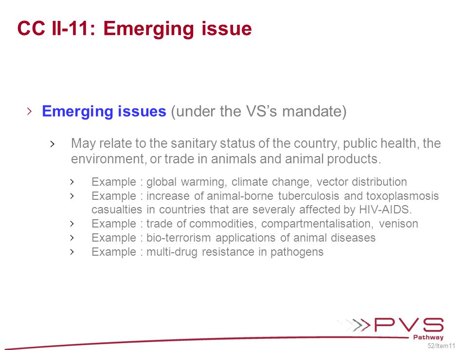 CC II-11: Emerging issue Emerging issues (under the VS's mandate)