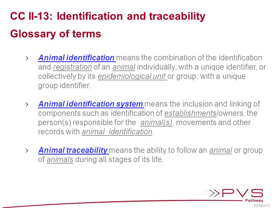 CC II-13: Identification and traceability Glossary of terms