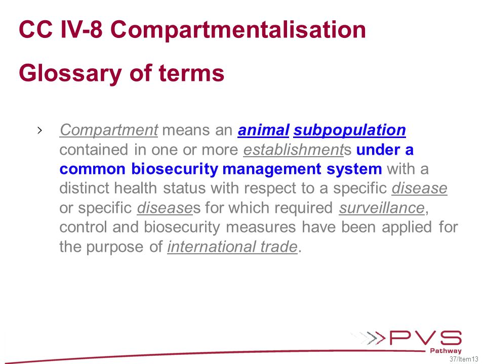 CC IV-8 Compartmentalisation Glossary of terms