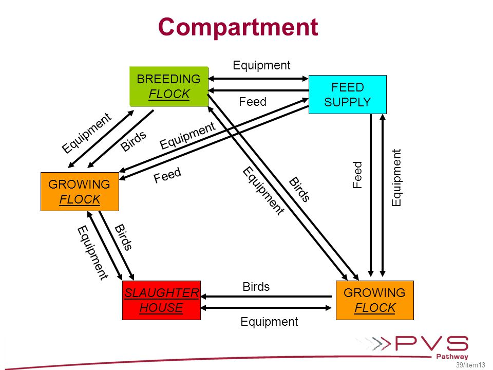 Compartment Equipment BREEDING FLOCK FEED SUPPLY Feed Equipment