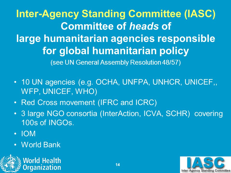 (see UN General Assembly Resolution 48/57)