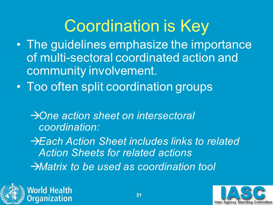 Coordination is Key The guidelines emphasize the importance of multi-sectoral coordinated action and community involvement.