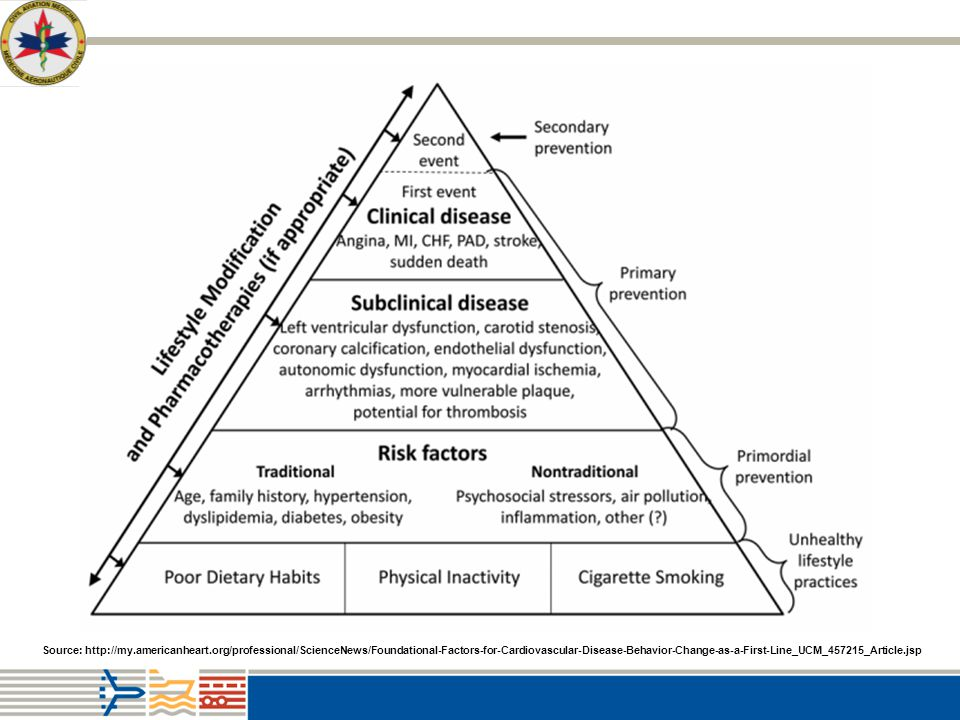 Figure 2. The evolutionary CVD pyramid