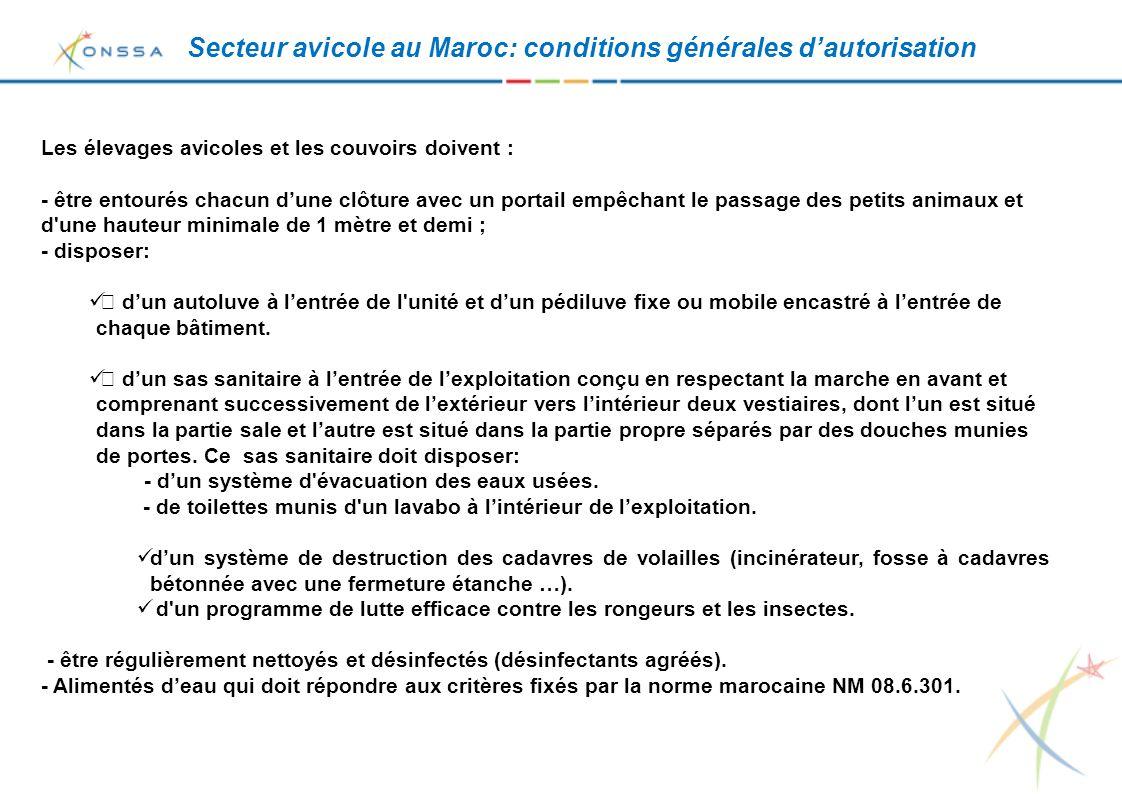 Secteur avicole au Maroc: conditions générales d'autorisation