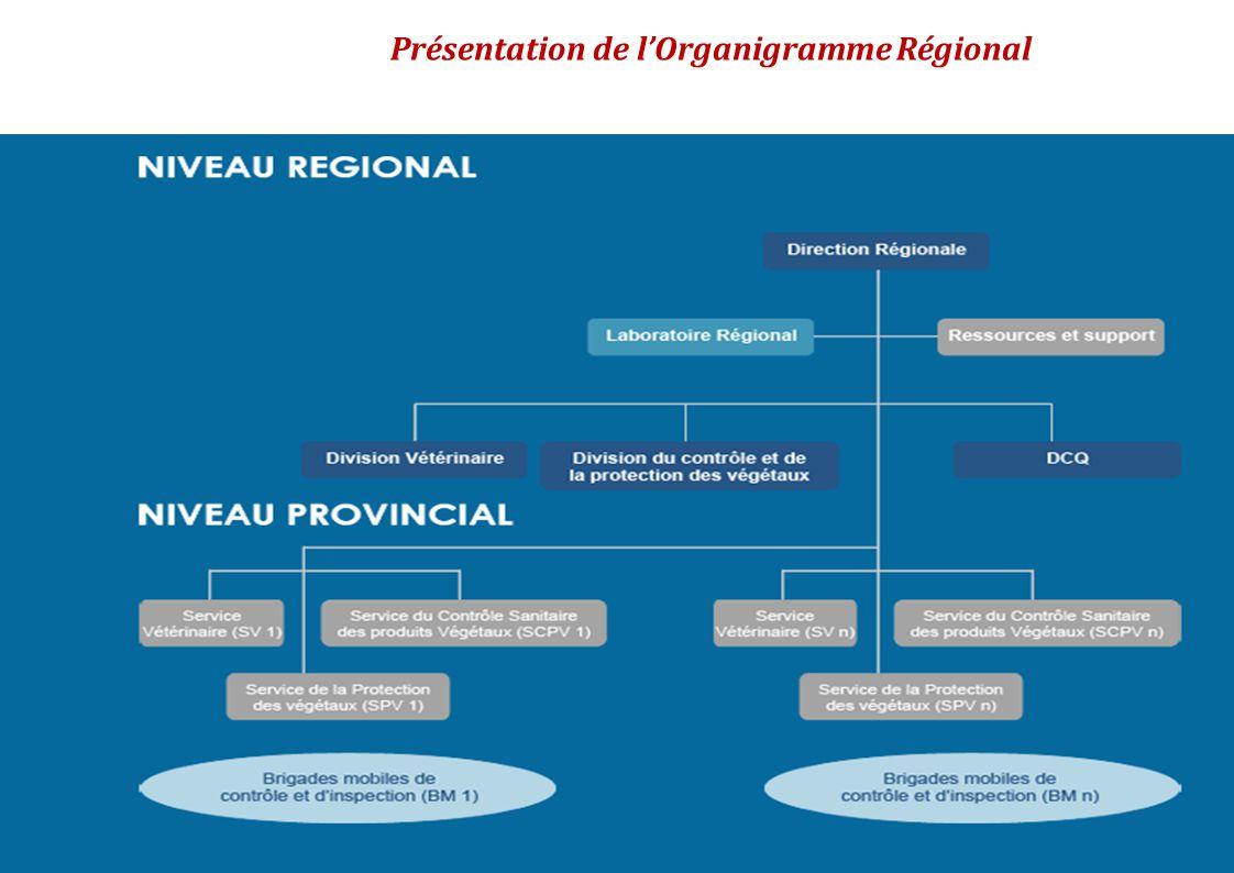 Présentation de l'Organigramme Régional