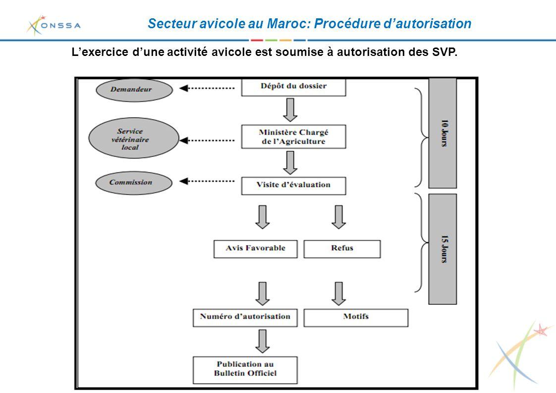 Secteur avicole au Maroc: Procédure d'autorisation