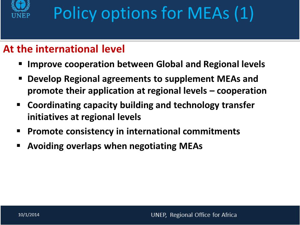 Policy options for MEAs (1)