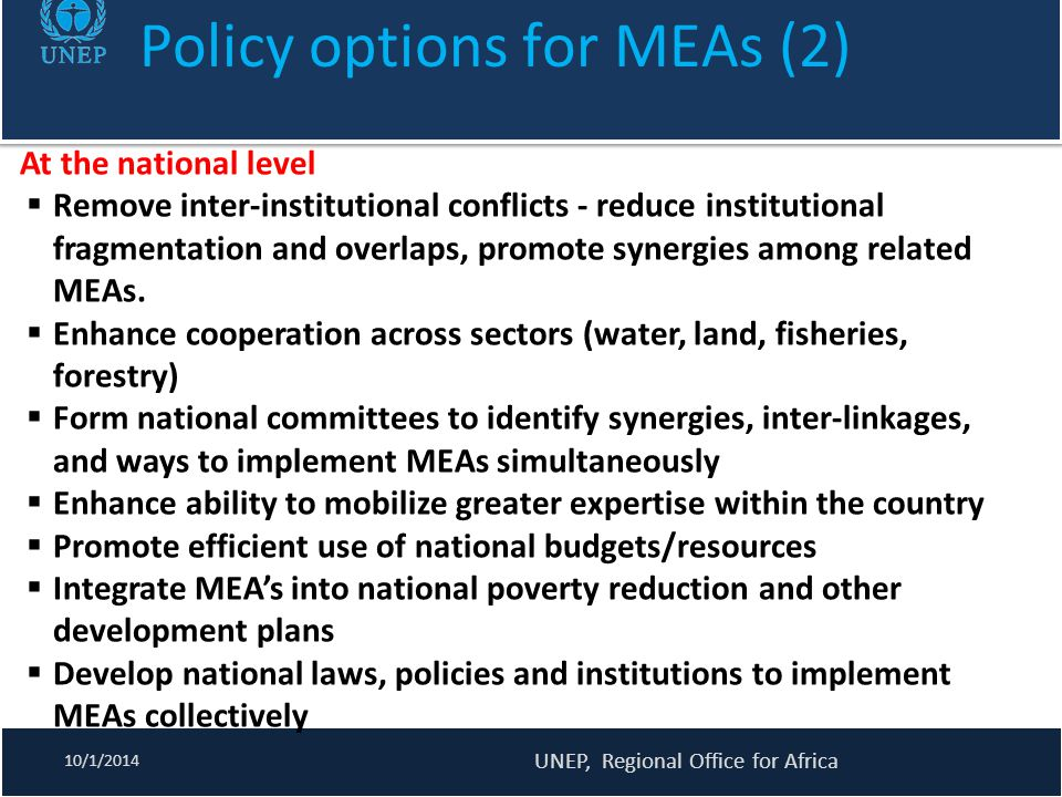 Policy options for MEAs (2)