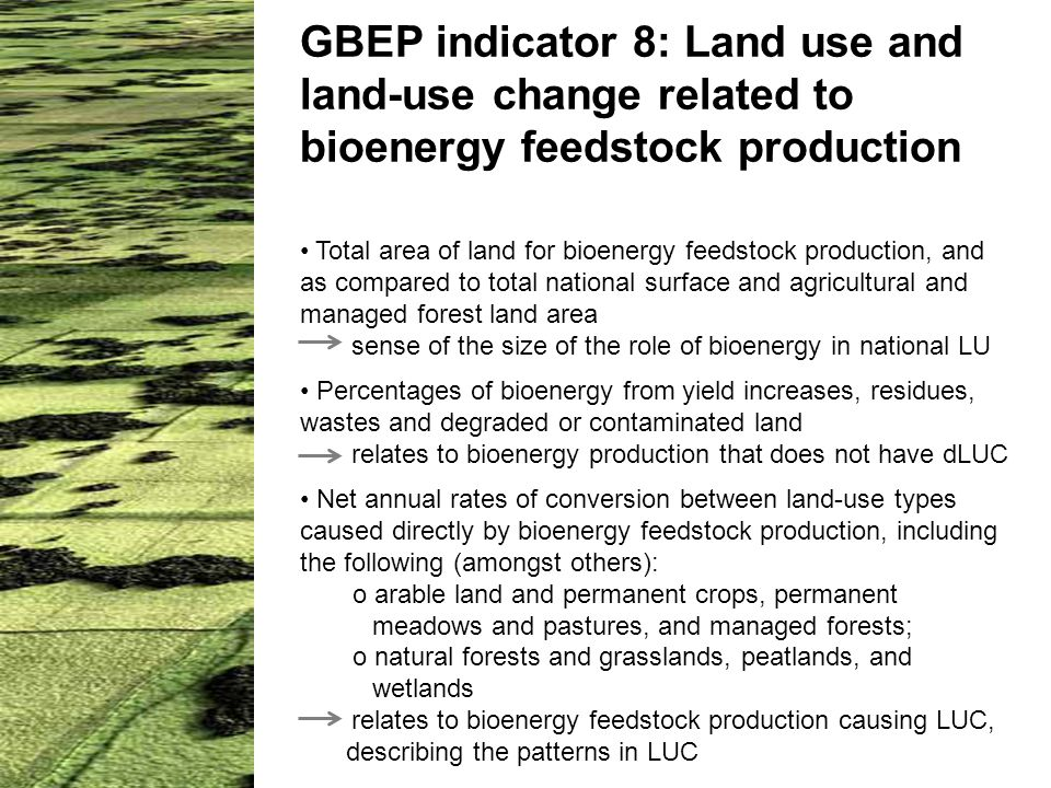 GBEP indicator 8: Land use and land-use change related to bioenergy feedstock production