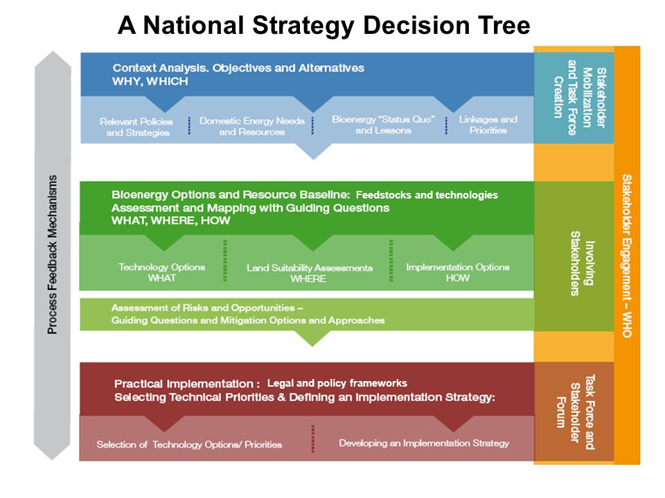 A National Strategy Decision Tree