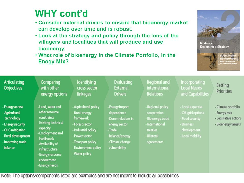 WHY cont'd Consider external drivers to ensure that bioenergy market can develop over time and is robust.