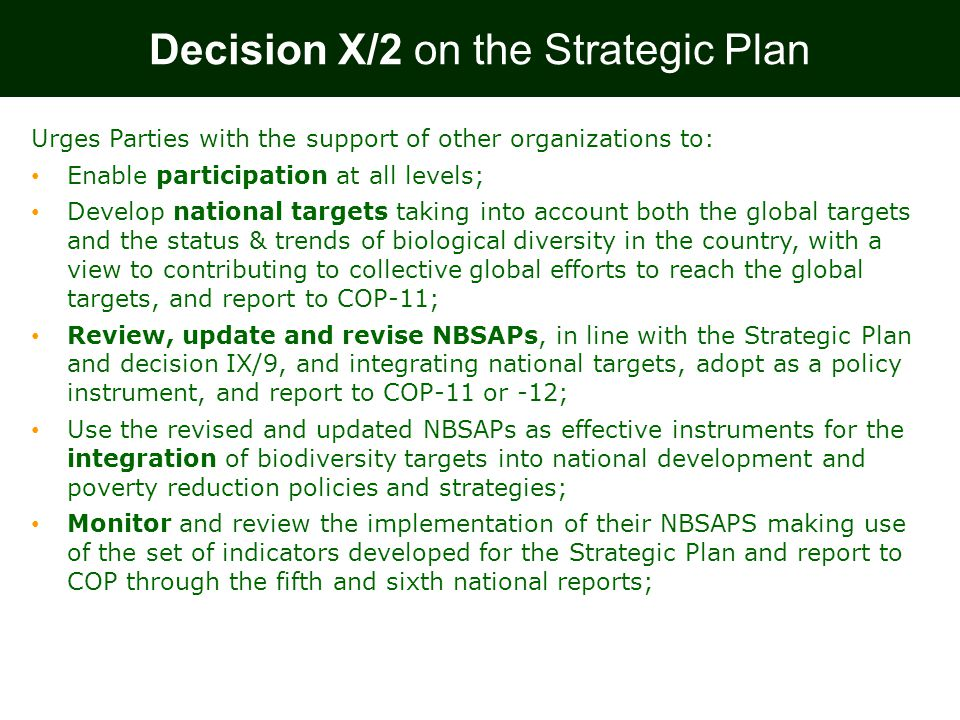 Decision X/2 on the Strategic Plan