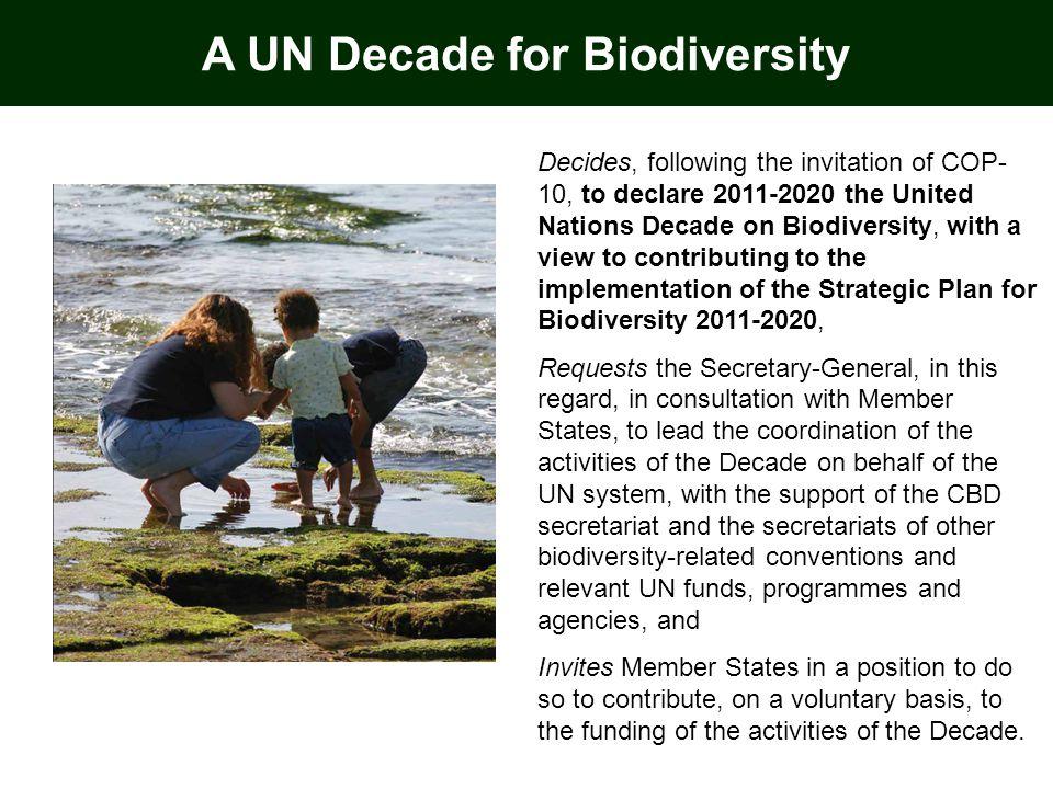 A UN Decade for Biodiversity