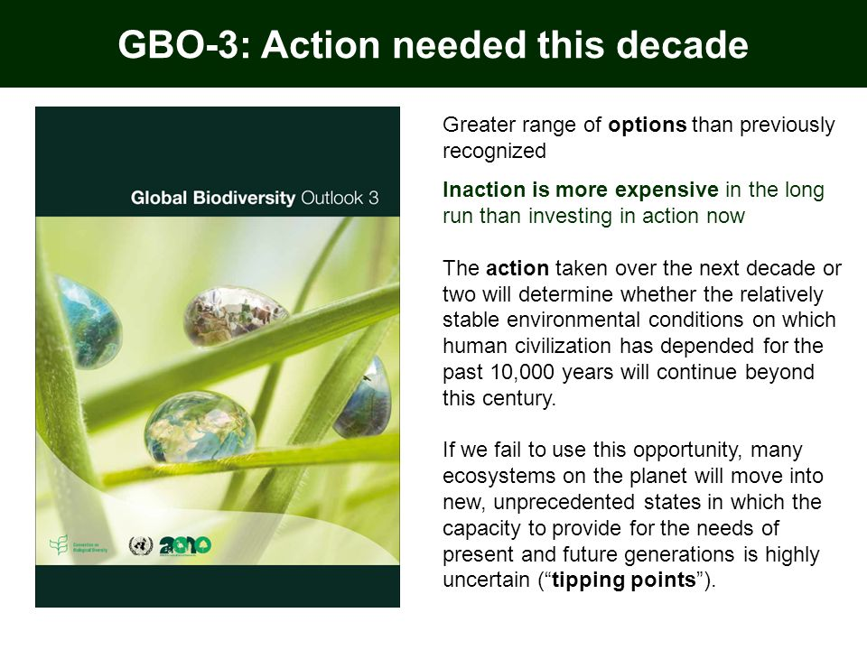 GBO-3: Action needed this decade