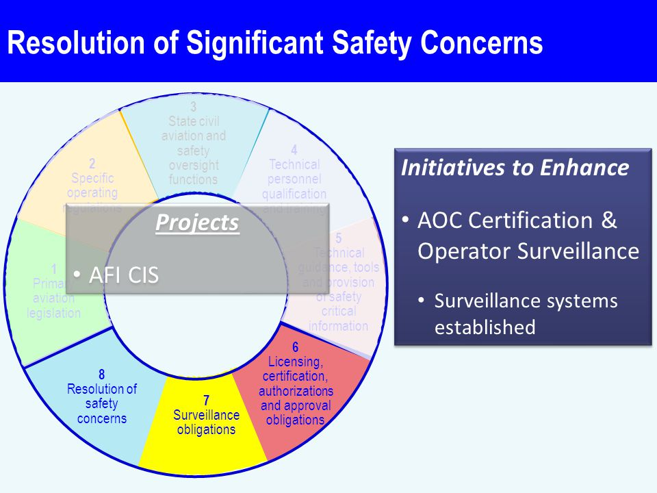 Resolution of Significant Safety Concerns Critical elements (CE)