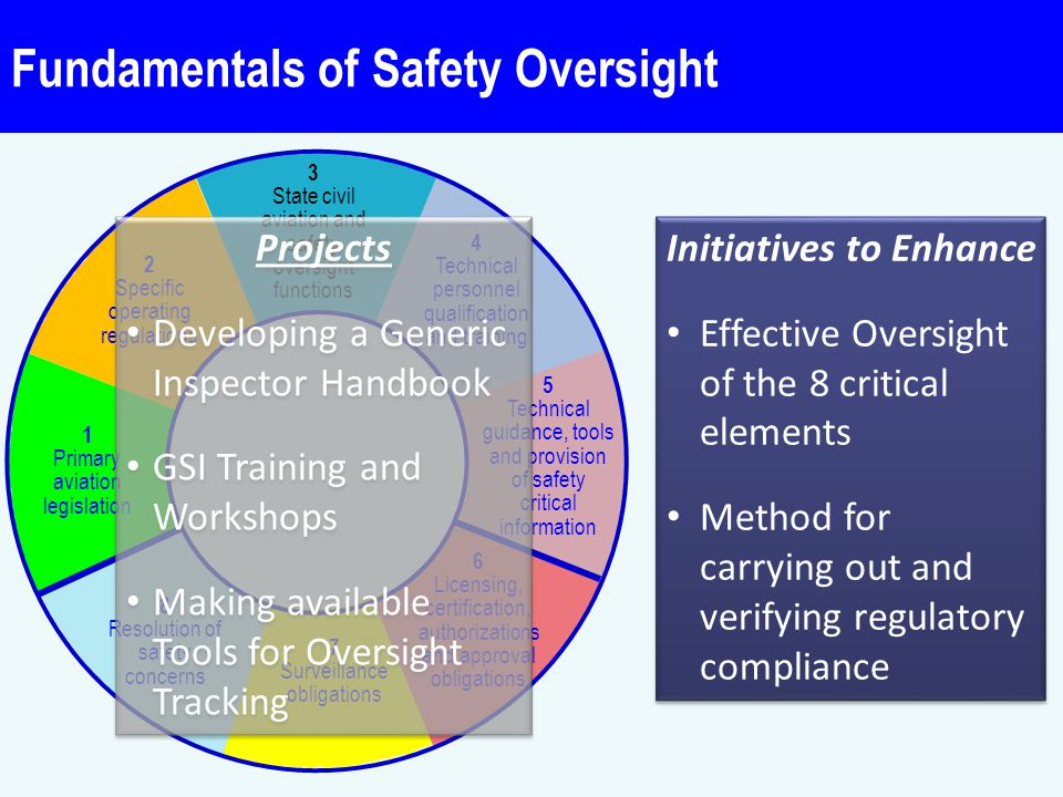 Fundamentals of Safety Oversight Critical elements (CE)