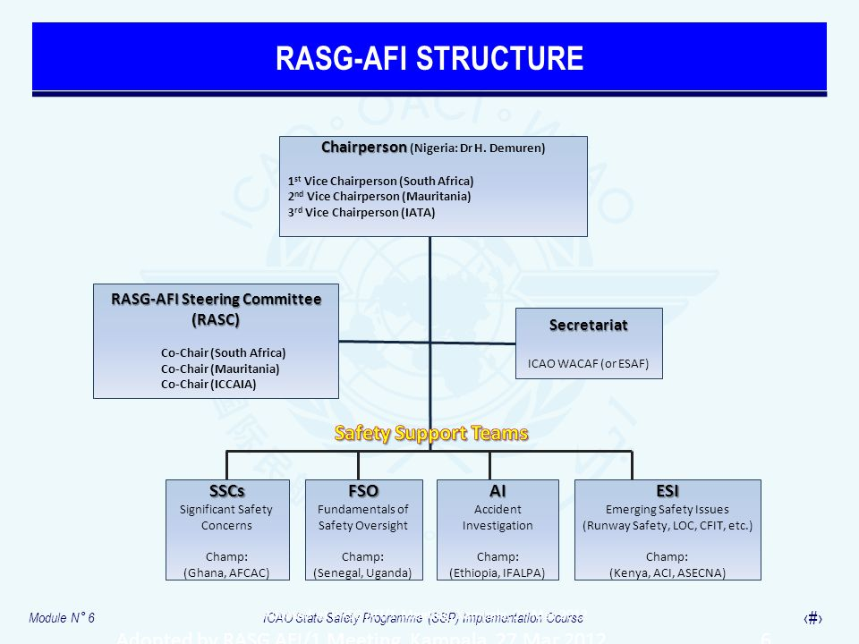 RASG-AFI STRUCTURE Safety Support Teams