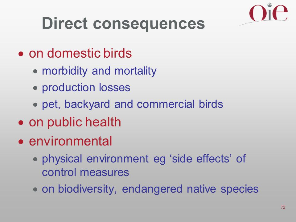 Direct consequences on domestic birds on public health environmental